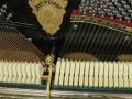 ed-piano-a-mahagon-petrof-006.jpg